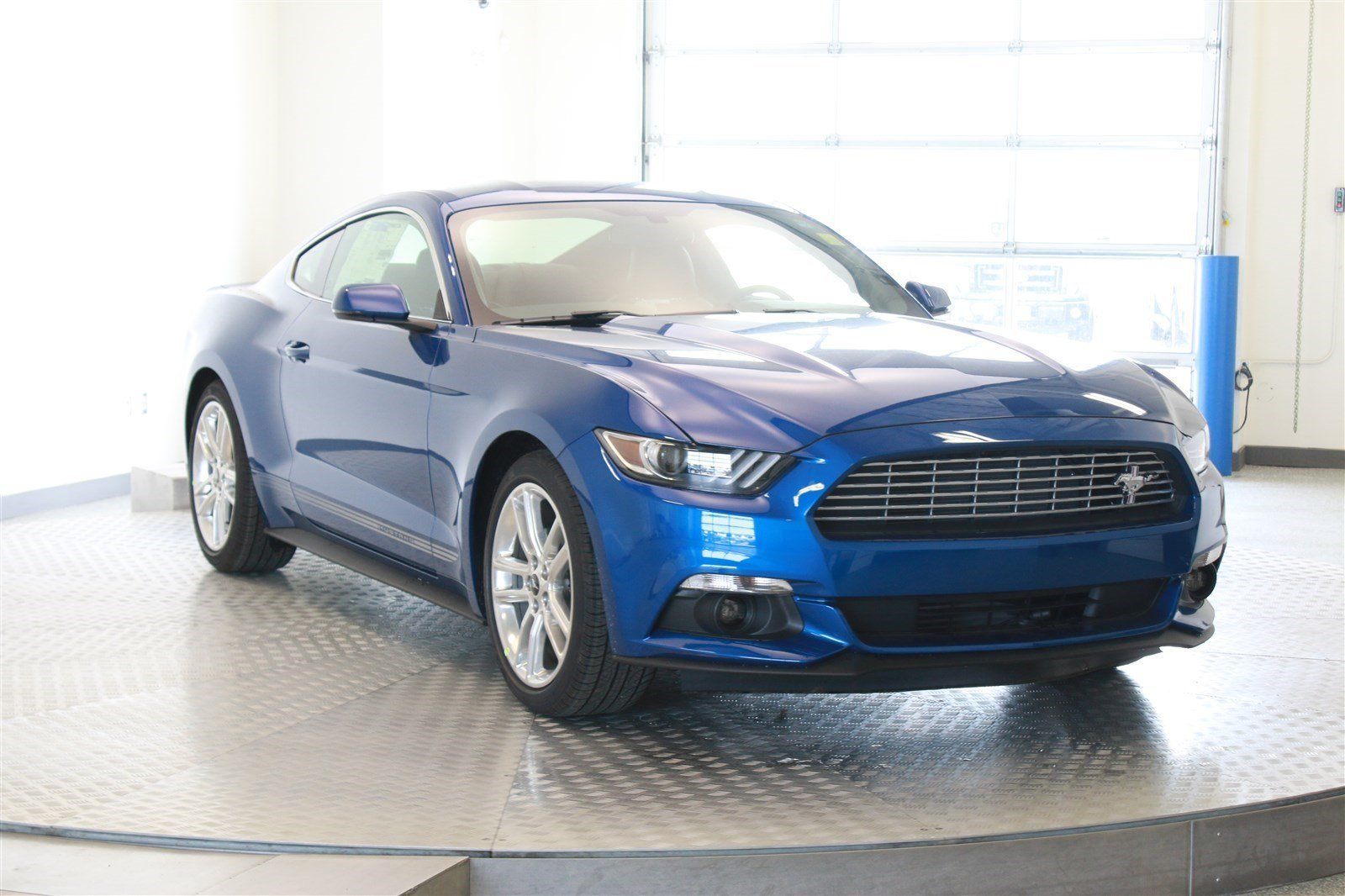 new 2017 ford mustang ecoboost premium 2 door coupe in. Black Bedroom Furniture Sets. Home Design Ideas
